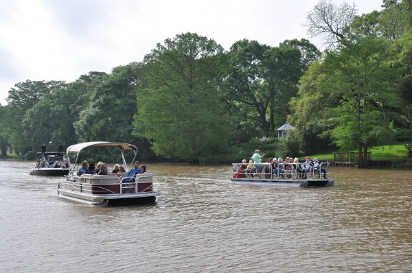 Boat Tour on Bayou Teche