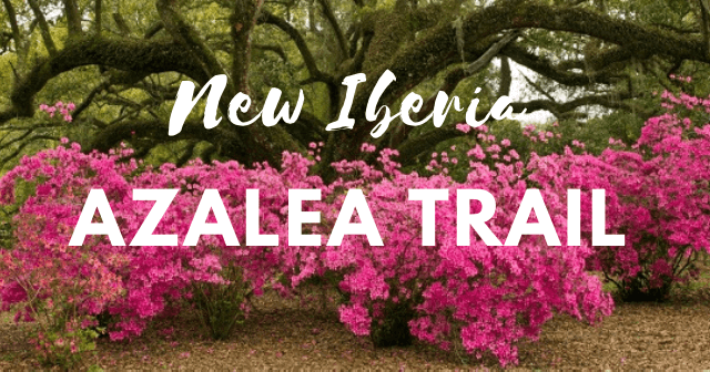 New Iberia Azalea Trail