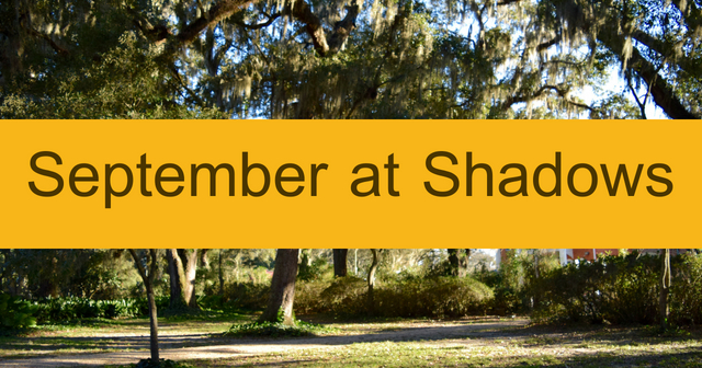 September At Shadows-on-the-Teche