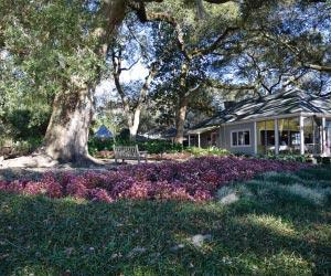 Jefferson Island Rip Van Winkle Gardens - Iberia Parish Louisiana