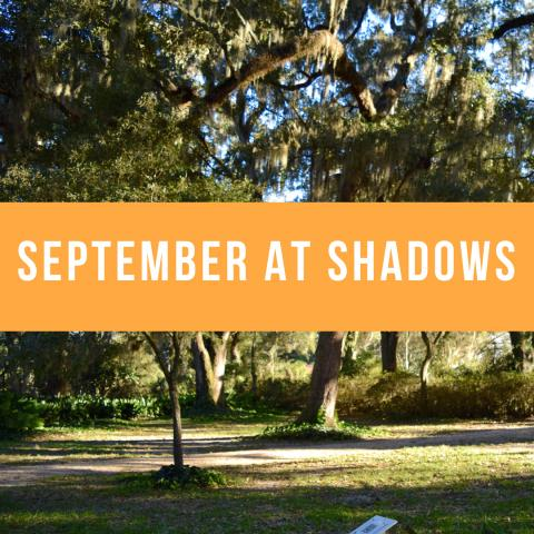 September at Shadows on the Teche
