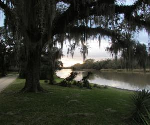 Jungle Gardens of Avery Island
