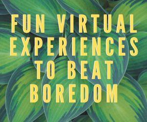 Fun Virtual Experiences to Beat Boredom