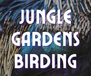 Birding at Avery Island's Jungle Gardens
