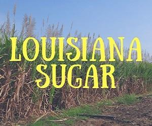Louisiana Sugar Cane Festival Spotify Playlist