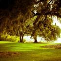Rip Van Winkle Gardens Lake View Jefferson Island horiz1- Courtesy of Iberia Parish CVB