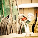 Trawl Tie Ropes on Shrimp Boat - Courtesy of Iberia Parish CVB
